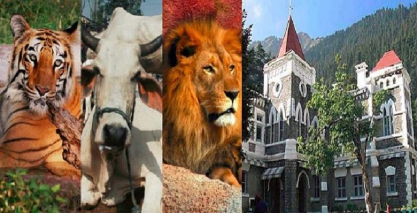 Animals are Legal Persons with Rights, Duties and Liabilities of a Living Person says Uttarakhand HC