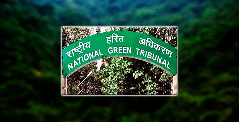 Job Post: Assistant (Judicial) @ National Green Tribunal, Delhi [Apply By Aug 28]