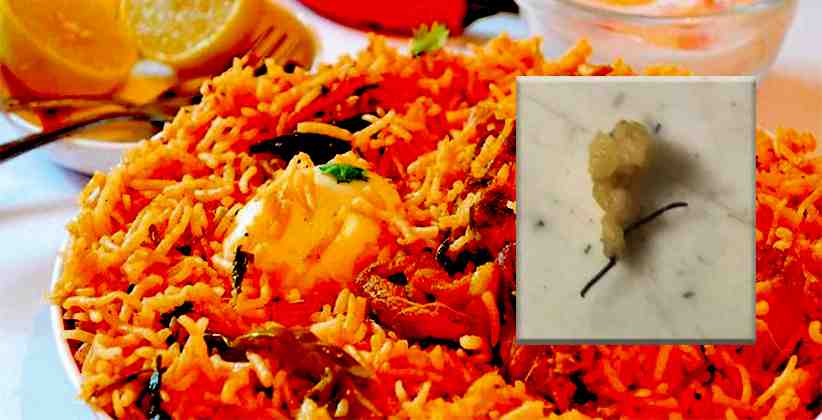 Hotel Fined INR 5,000 For Serving Customer An Iron Wire With His Biryani