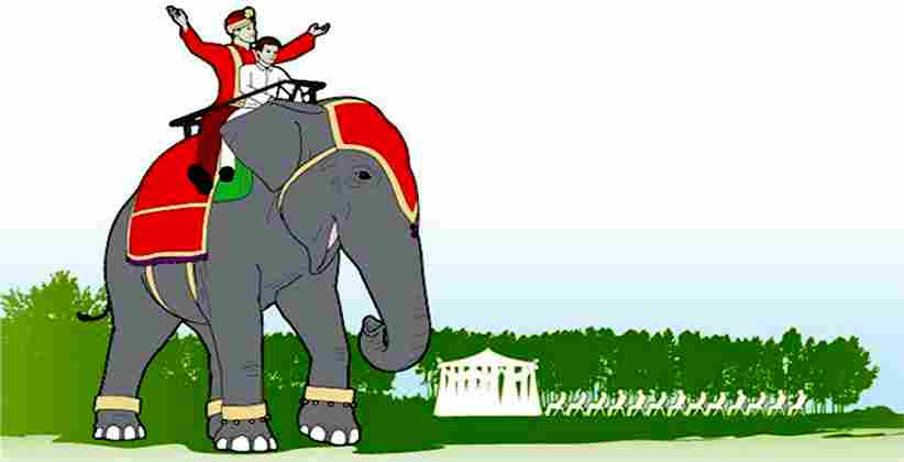 Goa: Same-Sex Couple Uses Elephant For Wedding Procession, Complaint Lodged For Animal Rights Violation