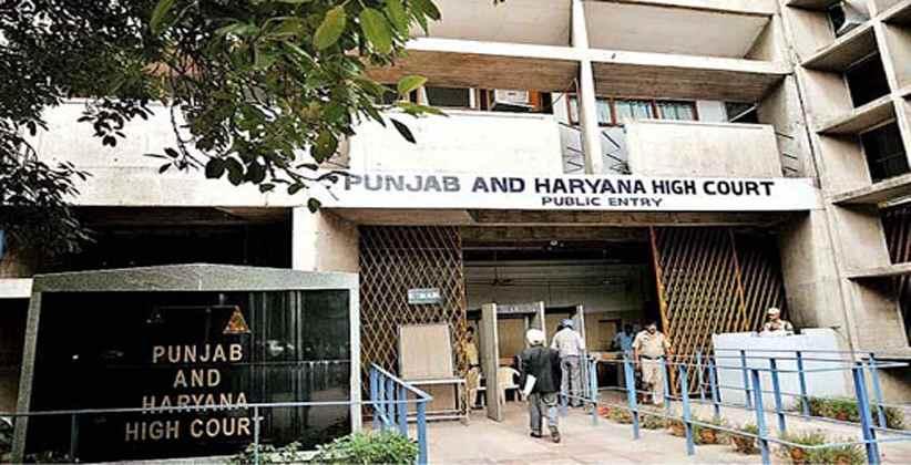 Constitutional Validity Pregnancy Punjab Haryana HC