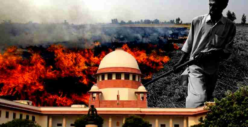 Plea in SC to Ensure Ban on Stubble Burning; Provision for Reimbursement of Money Spent by Farmers on Stubble Removing Machines