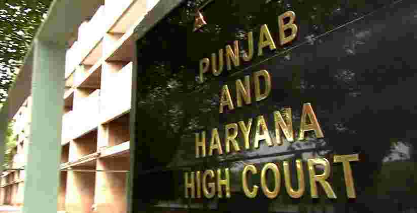Survey Monkey Population, Sterilise Them, P & H High Court Tells Govt