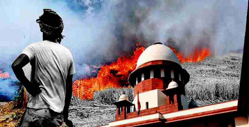 Supreme Court Stubble Burning MSP