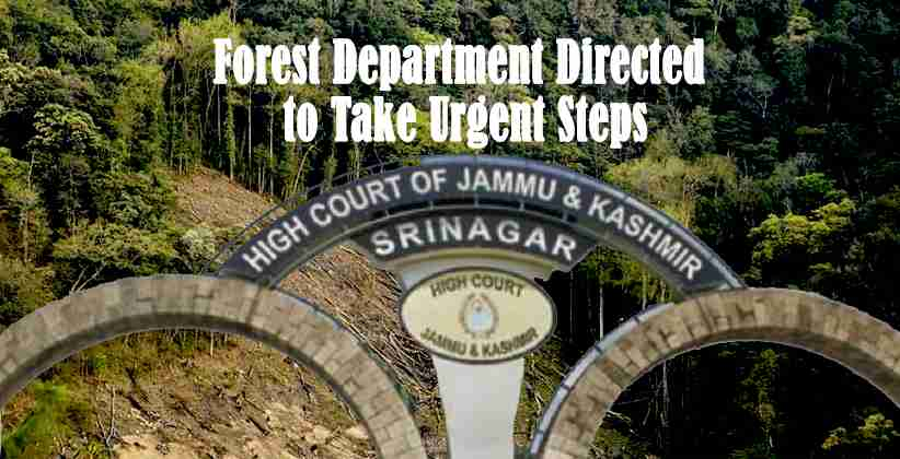 Jammu Kashmir Forest Department
