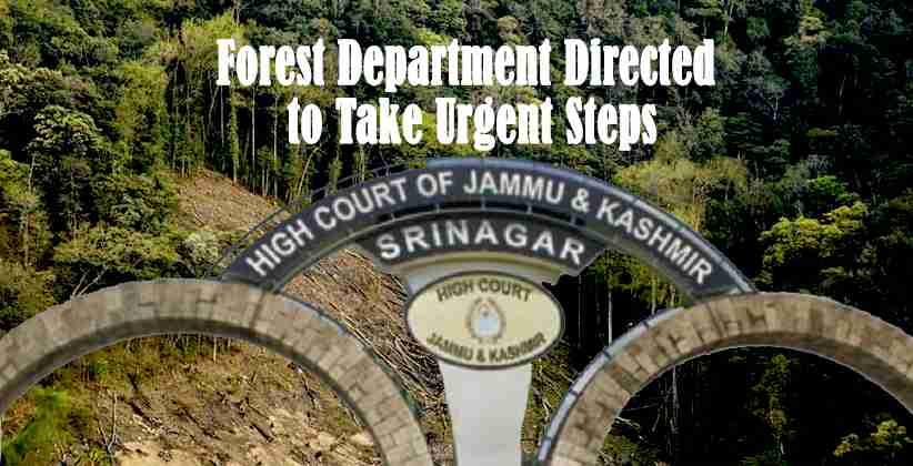 Jammu Kashmir Forest Department