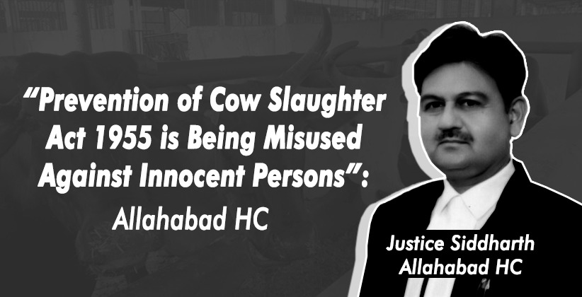 """Prevention of Cow Slaughter Act 1955 is Being Misused Against Innocent Persons"": Allahabad High Court [READ ORDER]"