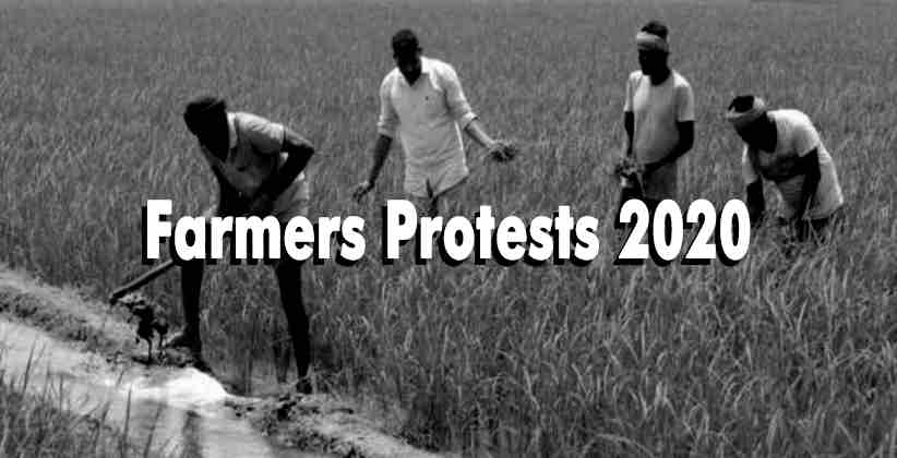 Farmers' Advocacy Group Protests 'Illegal' Detention of Farmers, Moves Punjab & Haryana High Court
