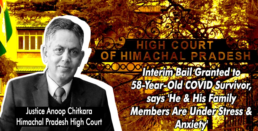 Himachal Pradesh HC Grants Interim Bail to 58-Year-Old COVID Survivor, says 'He & His Family Members Are Under Stress & Anxiety'
