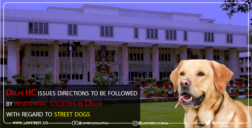 Delhi HC issues directions to be followed by residential societies in Delhi with regard to street dogs
