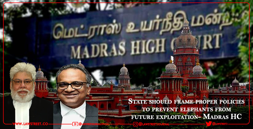 State should frame proper policies to prevent elephants from future exploitation- Madras HC [READ ORDER]