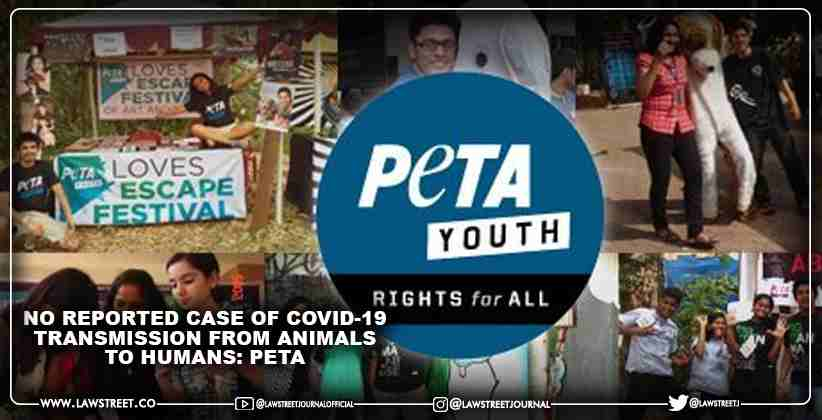 No reported case of COVID-19 transmission from animals to humans: PETA