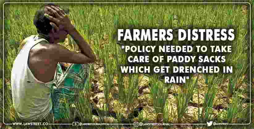 Policy Needed to Take Care Of Paddy Sacks