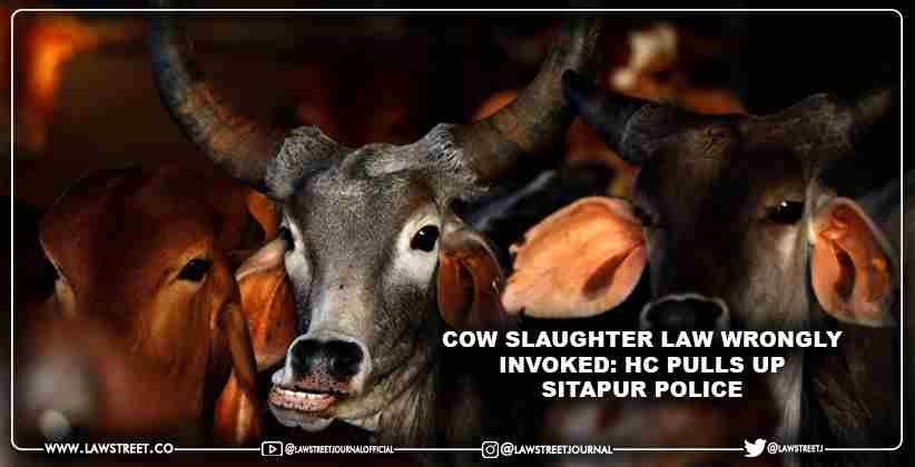 Cow Slaughter law wrongly invoked: HC pulls up Sitapur Police