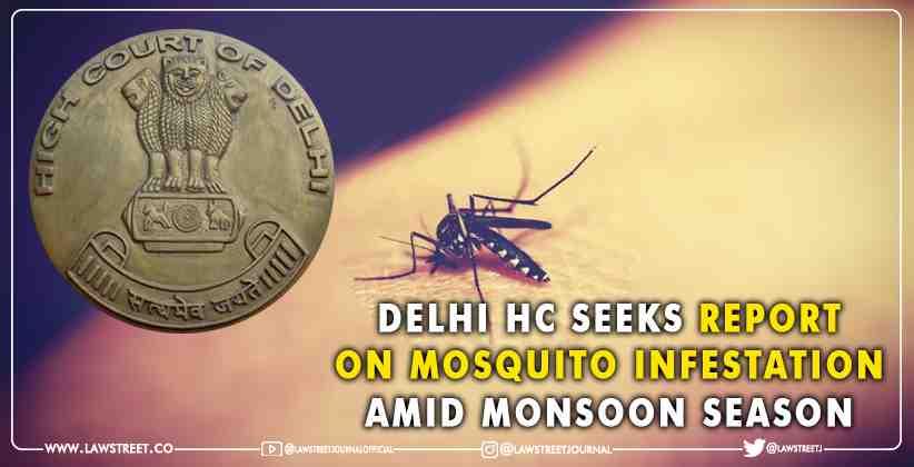 Delhi High Court Seeks Report on Mosquito…