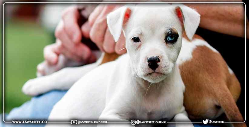 decisions barring pets