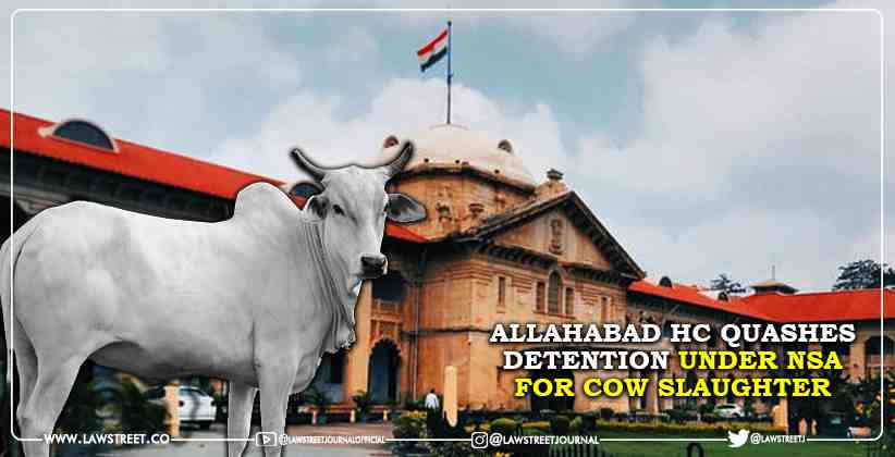 Allahabad High Court quashes detention under NSA for cow slaughter