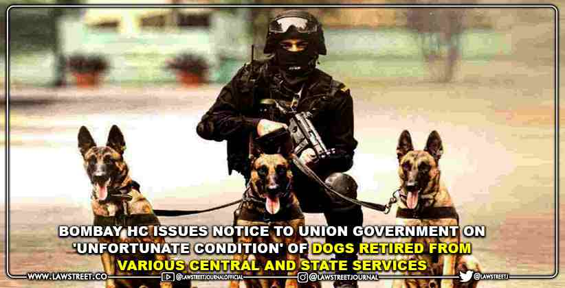 Bombay High Court Issues Notice to Union Government on 'Unfortunate Condition' of Dogs Retired From Various Central and State Services [READ ORDER]