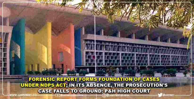 Forensic Report Forms Foundation of Cases…